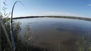 Ловля карпа. Рыбалка в Казахстане