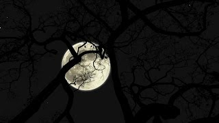 Moon animation HD