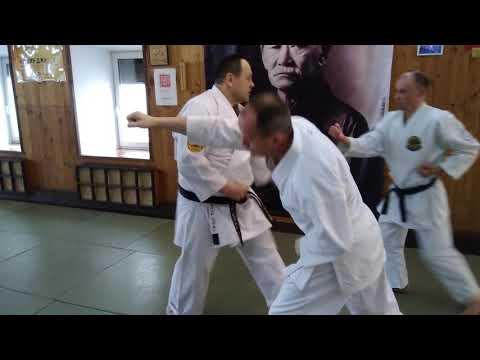 Goju Ryu karate kata Tensho / application bunkai with two partner