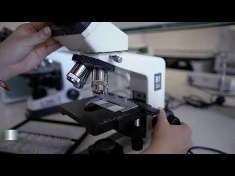 RTU Olaines Tehnoloģiju koledžas laboratoriju svinīgā atklāšana