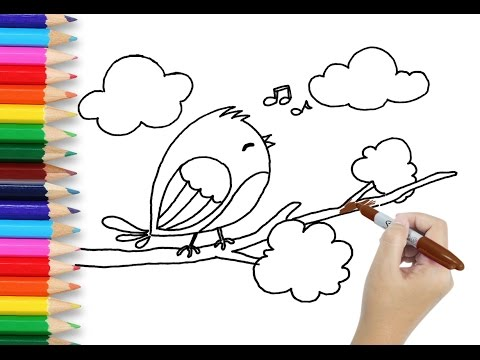 Art For Kids Learn How To Draw Bird Drawing And Coloring