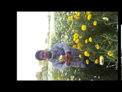 Sunn Raha Hai Na Tu (Aashiqui 2) (HD PC Android)-(Pagalworld.Com)