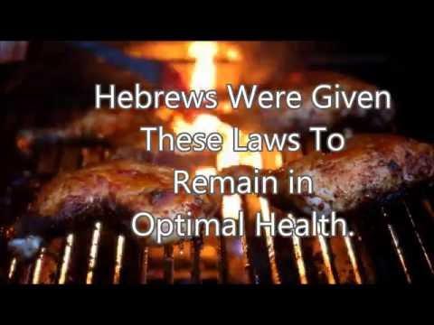 Part 1 Hebrew Israelite Kosher Diet : Laws of The Torah & Bible Deuteronomy