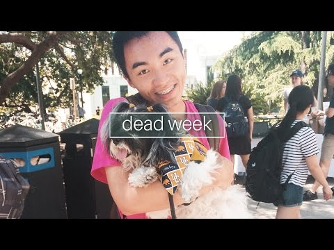 RRR Week (aka Dead Week) at UC Berkeley || VLOG