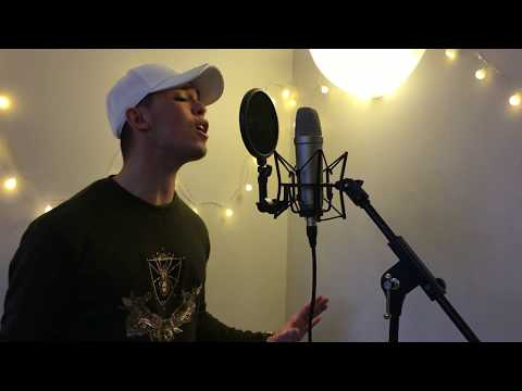 Adele - When We Were Young (Cover by Dylan Rached)
