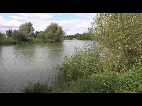 CROWSHEATH FISHERY, DOWNHAM, NR BILLERICAY, ESSEX, ANGLERS MAIL TACTICAL BRIEFINGS