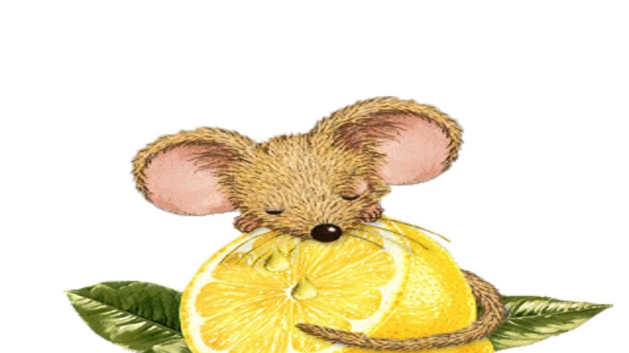 Шесть мышат