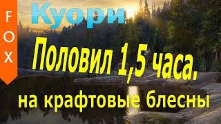 Куори, крафтовые блесны, поводковый материал. Русская рыбалка 4.
