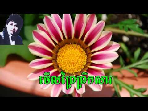 merl phrey phroeksa | Keo Sarath old video music mp3  2015 music mp3