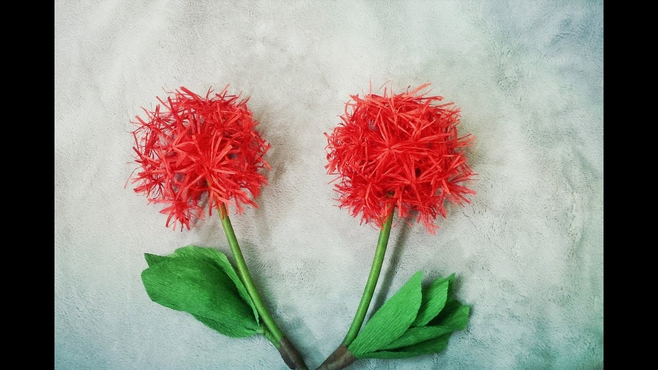 How To Make Haemanthus Multiflorus Blood Lily Flower From Crepe