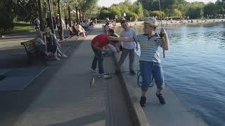Рибалка в центрі Москви, хто може так?!