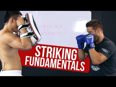 Boxing (Striking) Technique Fundamentals with Professional Fighter