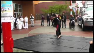 Taekwon-Do X-Treme Demo Team @ Kanata Centrum Summer Fest (June 2012)