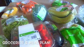 Groceries & Meal Plan 27th April 2015
