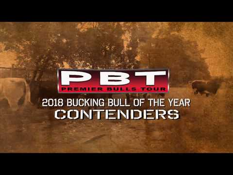 2018 Premier Bulls Tour Bucking Bull of the Year Nominees