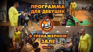 Программа тренировок для девушек в тренажерном зале (Часть 1)