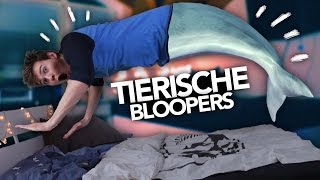 TIERISCHE BLOOPERS  Joey39;s Jungle