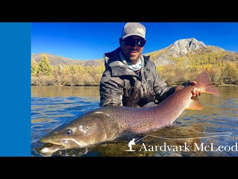 Fly Fishing From Sweetwater Mongolian Taimen Camp