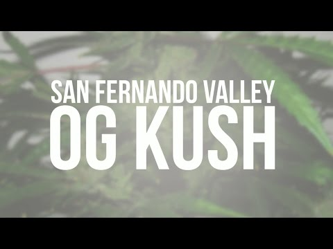 San Fernando Valley OG Kush genetic