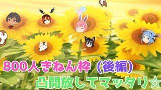 [LIVE] 【LIVE】チャンネル登録者様 800人ありがとう放送!!