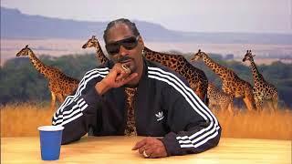 HILARIOUS! Snoop Dogg narrates Animal Planet Documentary