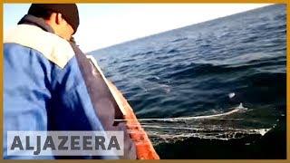 earthrise - Aral Sea Reborn