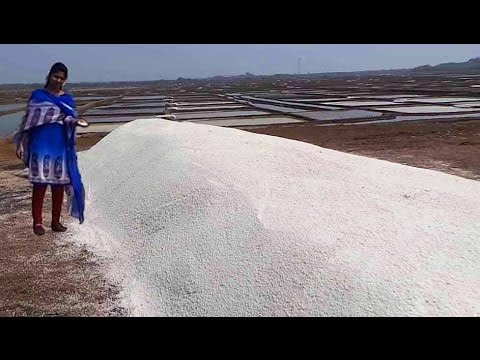 Salt Nacl mineral Making Process Naturally | How to make Sea crystalline Salt Chemistry Preparation