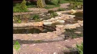 Пример оформления садового пруда:  водный каскад(, 2011-11-08T20:50:59.000Z)