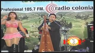 Mateo Palomares - El Camaron