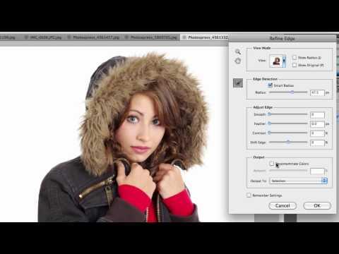 Refine Edge in Photoshop CS5 |
