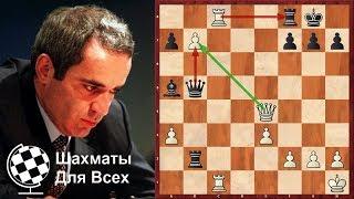 видео: Шахматы. Гарри Каспаров. Редкая ПАРТИЯ необычайной КРАСОТЫ!