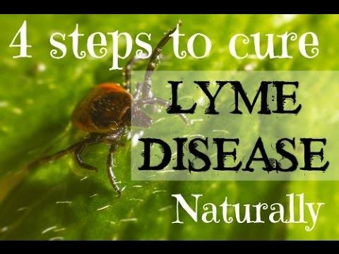 4 steps to cure Lyme Disease NATURALLY / Borelioza - naturalne leczenie w 4 krokach [Napisy PL]