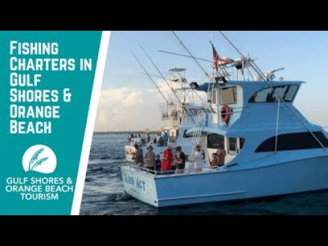 Fishing Charters In Gulf Shores & Orange Beach, AL | Plan A Fishing Trip With Gulf Coast Experts