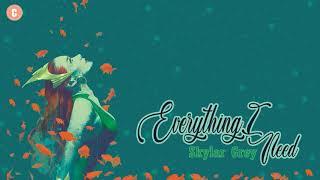 [Vietsub+Kara] Everything I Need - Skylar Grey