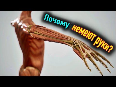 Так и до инсульта недалеко: 7 причин онемения рук