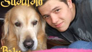 Rap-Song für verstorbenen Hund