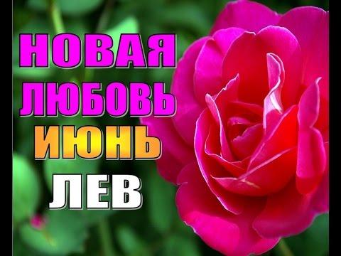 любовный гороскоп льва 2013