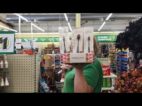 New  Finds At Dollar Tree | My Store Manager Makes An Appearance|Walk-through