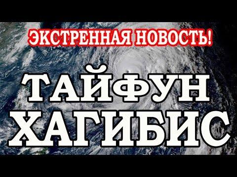 """Тайфун """"Хагибис"""" , тайфун в Японии,  регрессивный гипноз"""
