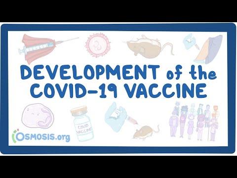 Development of the COVID-19 Vaccine