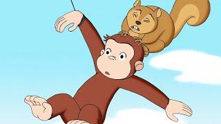 Curious George 🐵Curious George Flies a Kite 🐵WildBrain