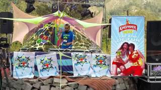 PULSE AKA DJ MASH AT HIMALAYAN MUSIC FESTIVAL MCLEODGANJ HIMACHAL PRADESH INDIA (PART 3)