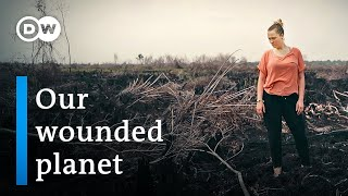 Why it's time for sustainable business: Rethinking growth – Founders Valley (1/3)   DW Documentary