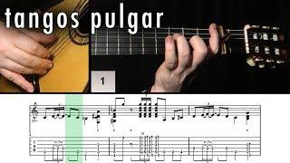 Flamenco Guitar 102 - 13 Tangos Pulgar