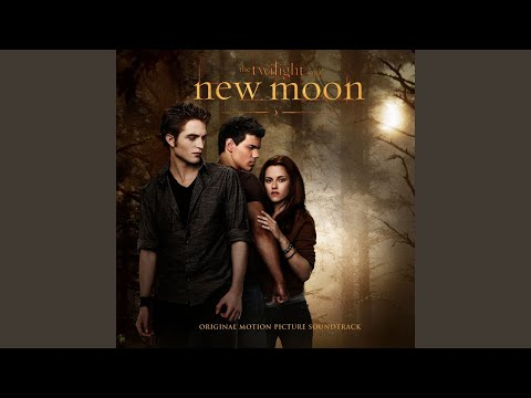 New Moon The Meadow