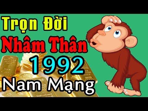 Tử Vi Trọn Đời 1992 Nhâm Thân Nam Mạng, Đầy Đủ Chính Xác Nhất, Năm Nào May Mắn Nhất?