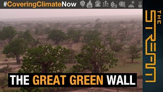 Can the 'Great Green Wall' fight climate change in Africa? | The Stream