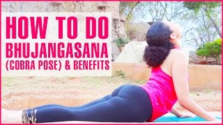 How To Do BHUJANGASANA Yoga (COBRA POSE) & Its Benefits