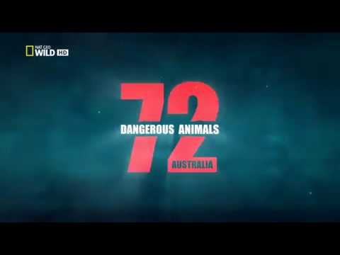 Aussie most dangerous animals - S01E01