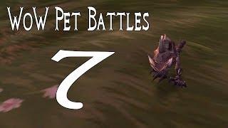 Mists Of Pandaria Pet Battles 7 | Eastern Kingdoms Trainers (world Of Warcraft)